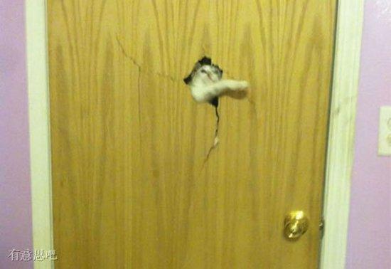 奴才快放我进去,不然有你好看!